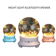 Led Bottle Lamp Preserved Flower In Glass Dome, Night Light Bluetooth Speaker Music Lamp Night Light Speaker Accessories tool(China)