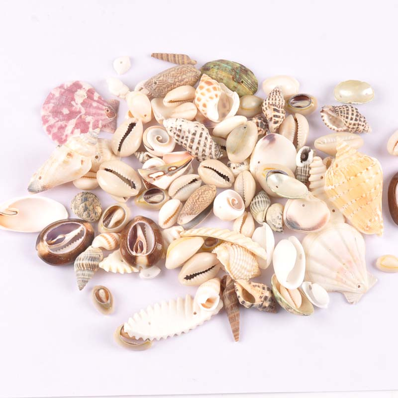 50g/lot Mixed Natural Shell Scrapbooking Craft Charms Pendants Drop Seashells For Jewelry Making One Hole TRS0292