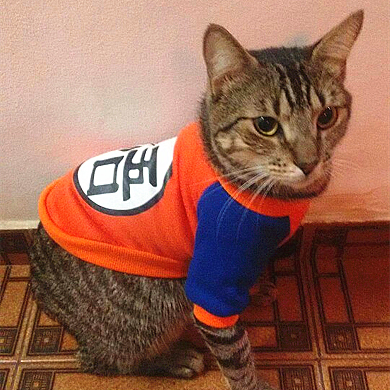 Warm Cat Clothes for Cats Pet Costume Winter Fall Cute Animal Clothing for Cat Coat Sweater Lovely Dog Clothes Pet Apparel 1b2Q