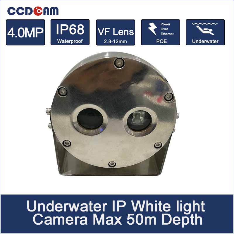 4MP 50M Depth White Light Underwater Camera POE power for Marine monitoring and swimming monitoring