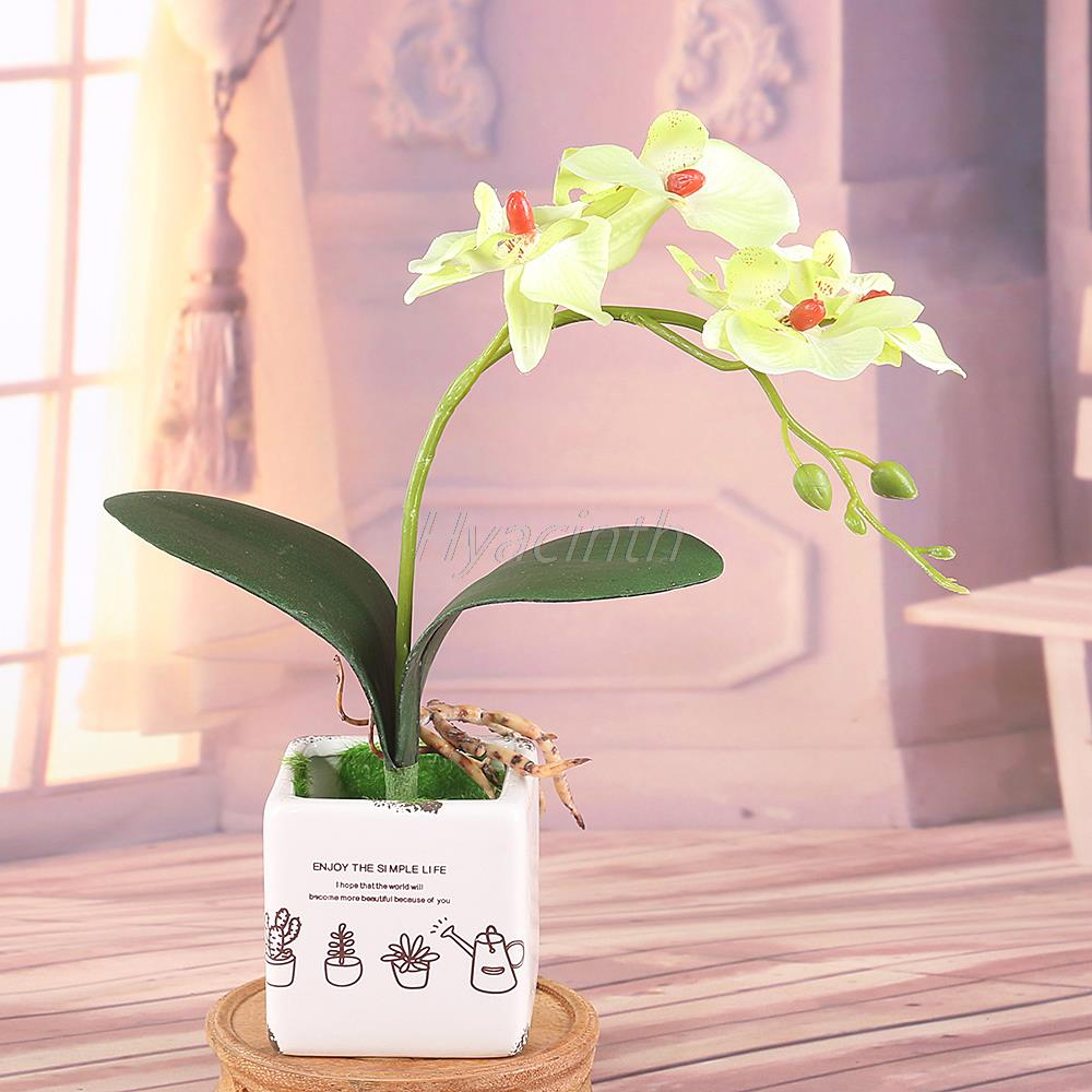 Wedding decorations orchids promotion shop for promotional for Orchid decor