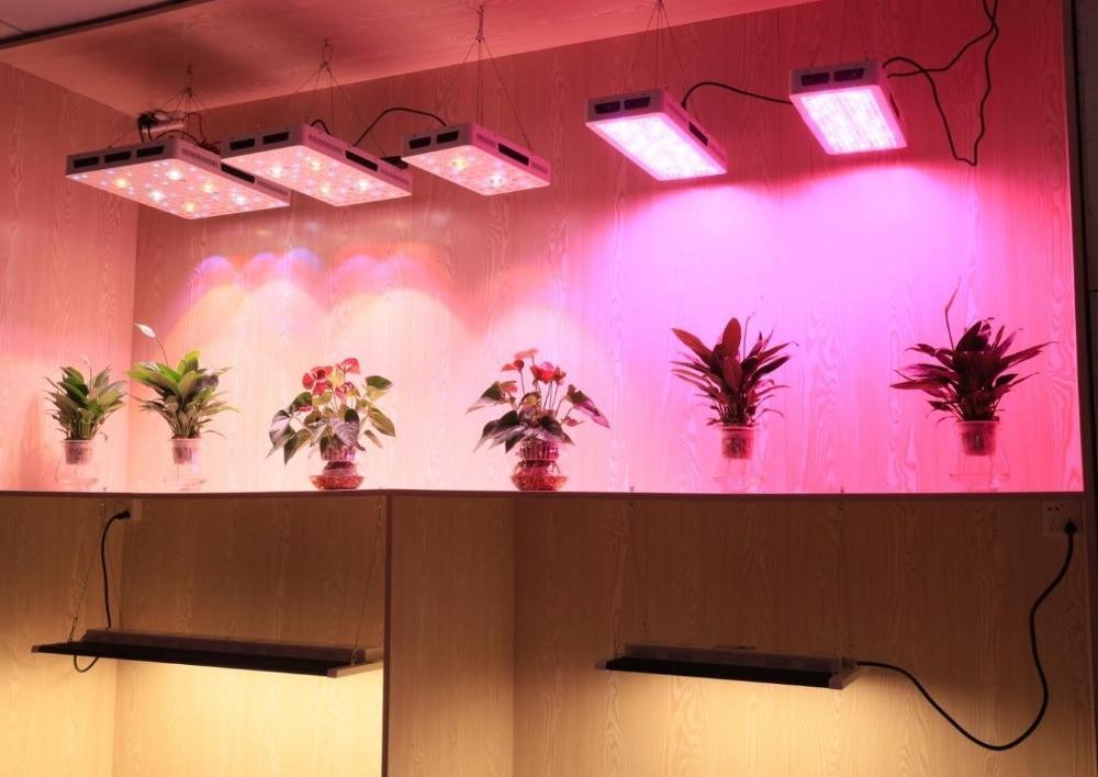 showroom4