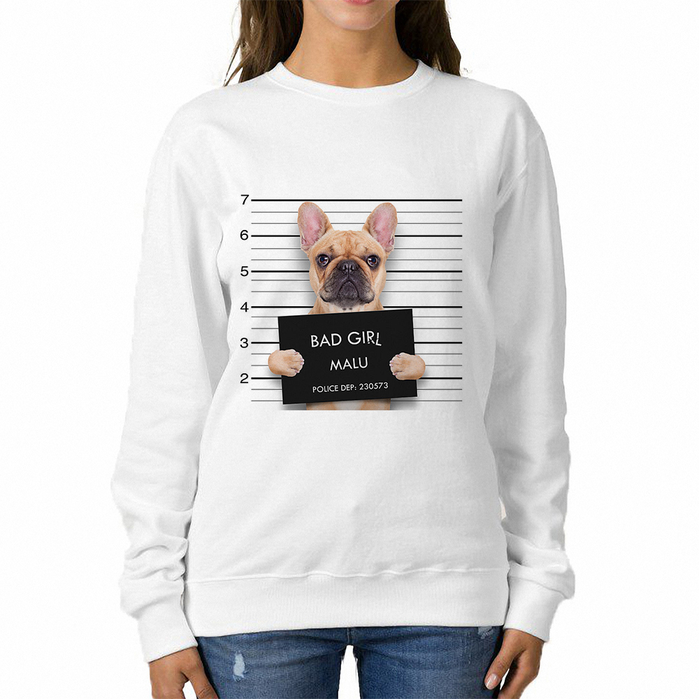 Babaseal Mugshot Dog Harajuku Kawaii Female Sweatshirt French Bulldog Long Hoodie Vintage Cool Crewnecks Kawaii Clothing