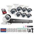 ANNKE HD 1080 P 8-КАНАЛЬНЫЙ H.264 + PoE NVR Ip Открытый Безопасности Камеры Системы 1 ТБ
