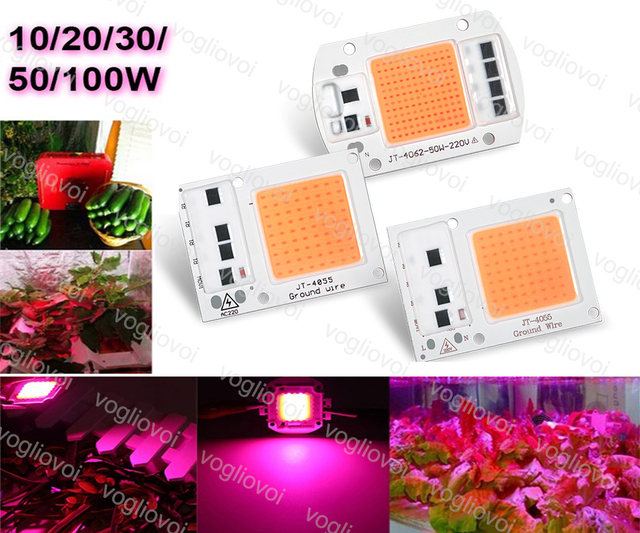 Vogliovoi LED Grow Lights COB Chip 110V 220V 20W 30W 50W Full Spectrum For Grwon Lights Greenhouse Grow Tent Plants Flower DIY