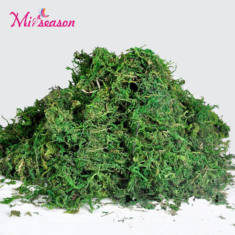 100g 500g Bag Keep Dry Real Green Moss Decorative Plants