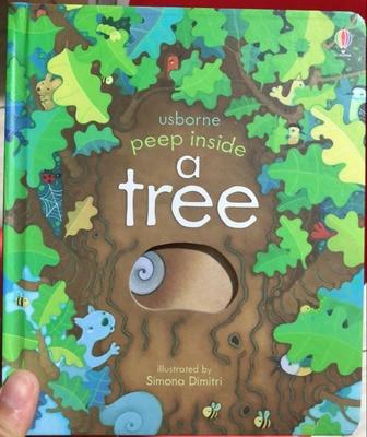 Peep dentro de un árbol educativo inglés 3D Flap imagen libros bebé niños lectura libro