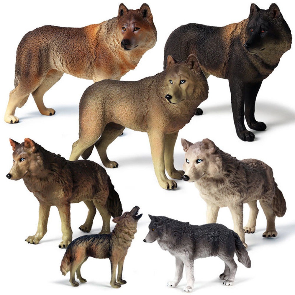 1 PCS Forest Wild Animal Grey Wolf Figure Science Educational Model Adult Kids Collection Toys Birthday Gift Home Decor