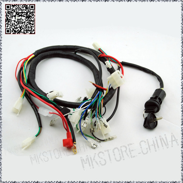 water cooled 250cc chinese atv wiring harness not lossing wiring 250cc key barrel quad wiring harness 200 250cc chinese electric rh aliexpress com atv wiring diagrams for dummies atv wiring diagrams for dummies