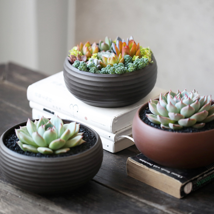 Compare Prices on Mini Planter Pots Online ShoppingBuy Low Price