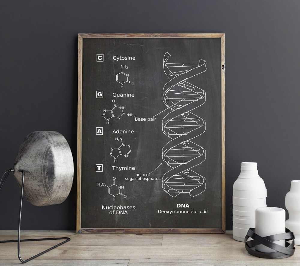 DNA patent, wall art, Genetics, posters,Biology wall decor,vintage print,blueprint,Medical Student gift idea,Science Decorations