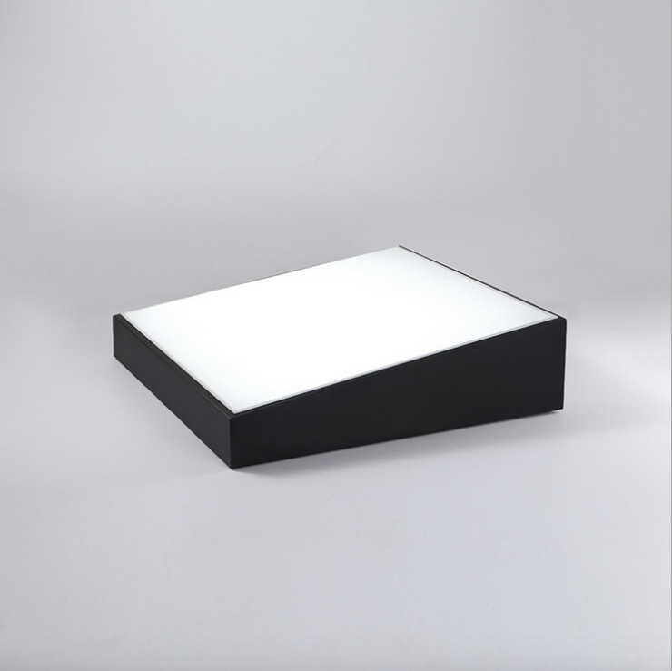 Buy Surface Mount Ceiling Luminaire