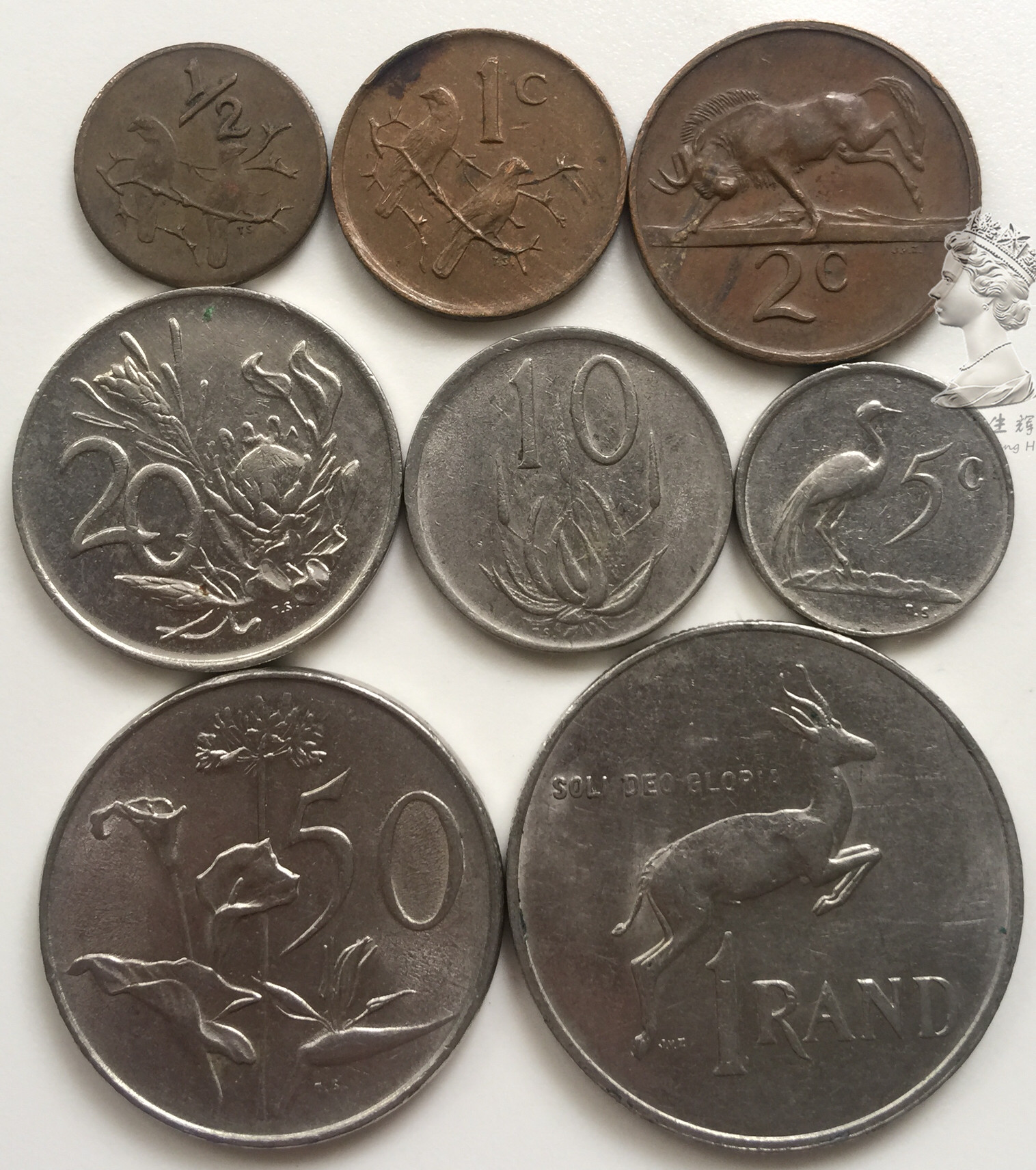 Set 8pcs South Africa Coins Sets Old Edition Africa 100