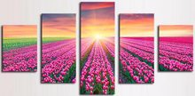 5 Piece Canvas Art Picture Modular Pink Lavender Flowers Painting Modern Pictures on The Wall For The Kitchen Home Wall Art Dec(China)