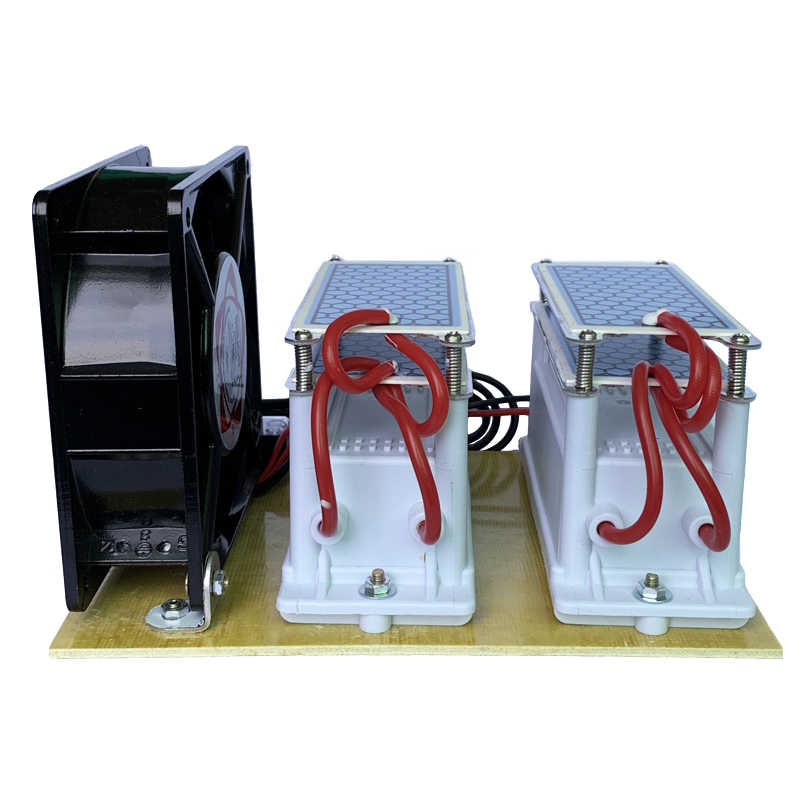220V/110V 20g Ceramic Ozone Generator Ozone Double Integrated Long Life Ceramic Plate Ozonizer Air Water Air Purifier