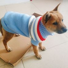 Pet Dog Clothes for Small Coats Jacket Winter Dogs Cats Clothing Warm Knitted SweatersTeddy Sweaters High Collar Sweater