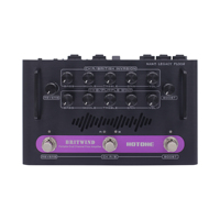 Hotone BritWind Portable Dual Channel Floor Amplifier Nano Legacy Amps Electric Bass Guitar Amplifier