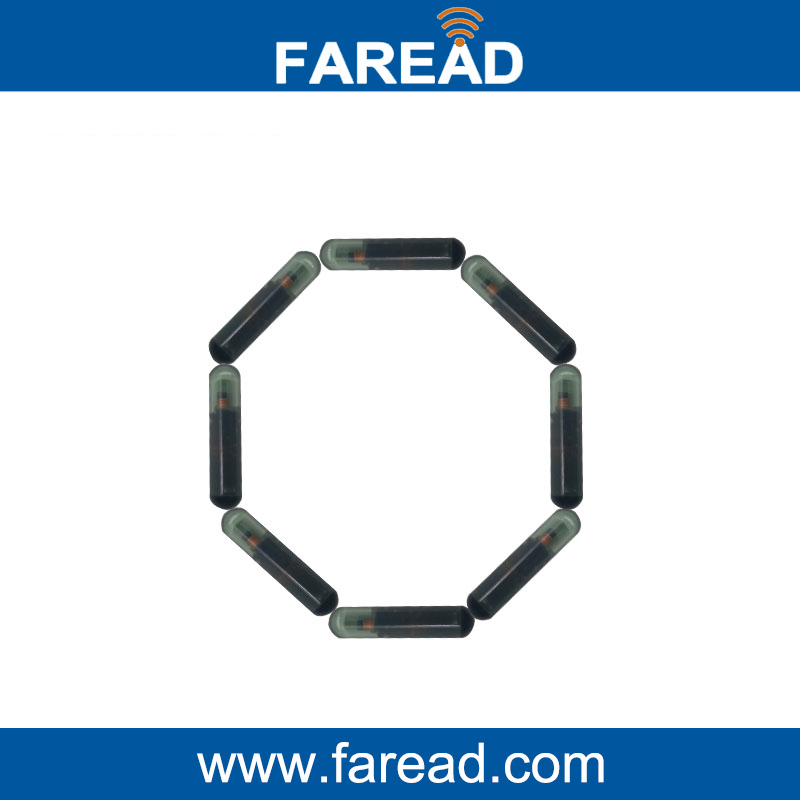 X100pcs Passive RFID Glass Tag With 15 Digital Numbers 2.12*12mm 134.2Khz  ISO11784/5