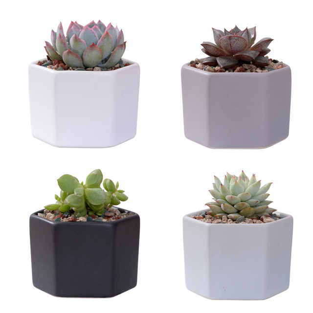 4pcs/set Matt Decorative Hexagon Flowerpot Mini Ceramic Succulent Plant Pots Desktop Flower Pot Bonsai Planter