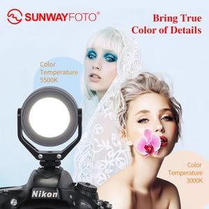 Image 3 - Кольцевой светильник для фотосъемки SUNWAYFOTO, светодиодный светсветильник льник для фото, видео, селфи, свет для youtube, студийное фото