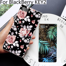 For BlackBerry KEY2 case Cartoon Painting soft Back Cover For BlackBerry KEY 2 case For Black Berry BBF100-4 Cases cover shell