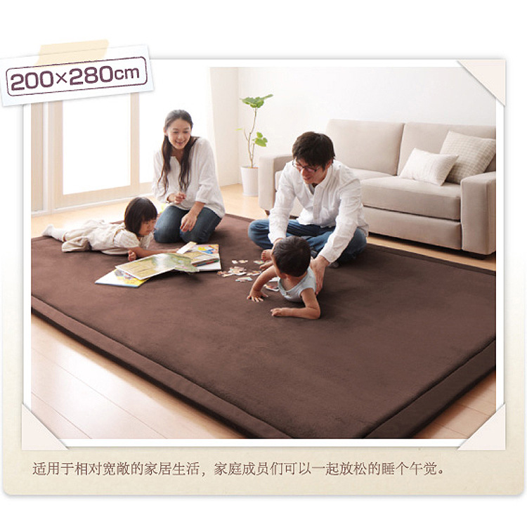 180*200 200*240 200*300cm Thick Coral Carpet Living Room Bedroom Children  Crawling MAT Rug Salono Parlor Tapete Pad Sala DT116