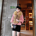 2016 Spring and Autumn Women's Genuine Real Rabbit Fur Jackets with Raccoon Fur Collar Female Short Coats VF0026