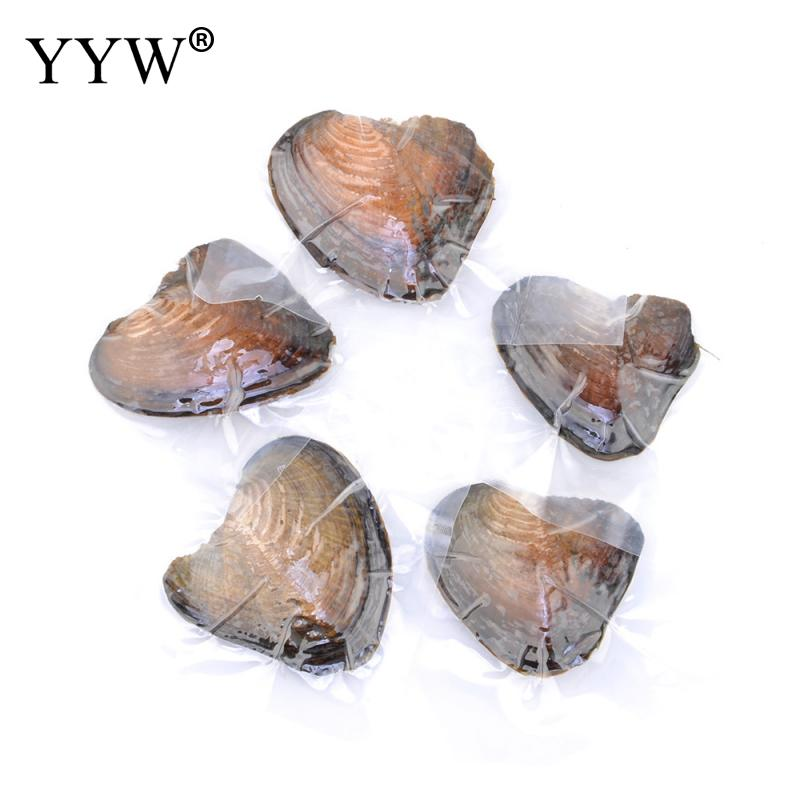 Hot Sale Vacuum Pack Oyster Wish Freshwater Pearl Pearl Mussel Shell With Pearl Inside Pearl different size for choice