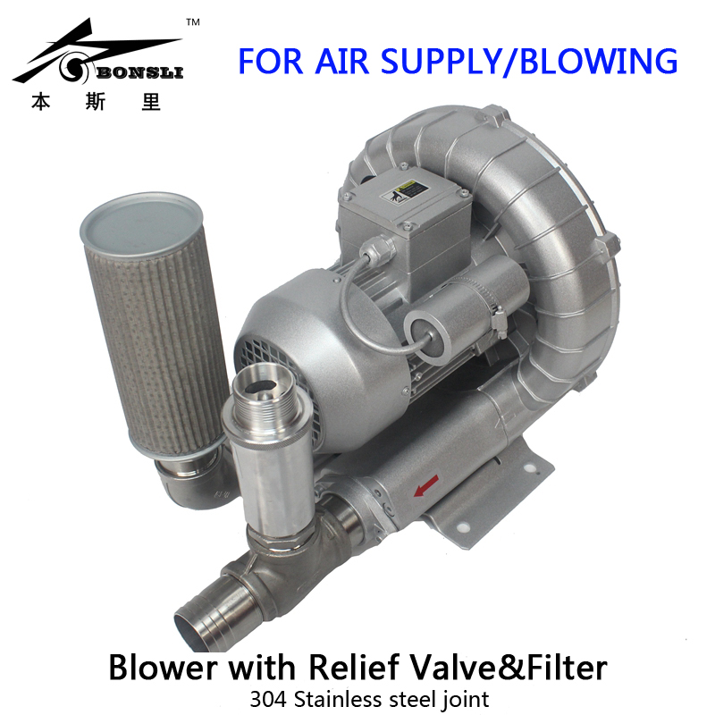 single phase 1HP Industry Ring blower filling bottles regenerative blower with Relief Valve filter for air