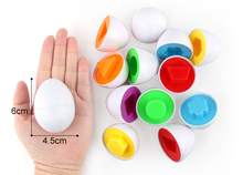 Shape Matching Eggs Toy for Kids