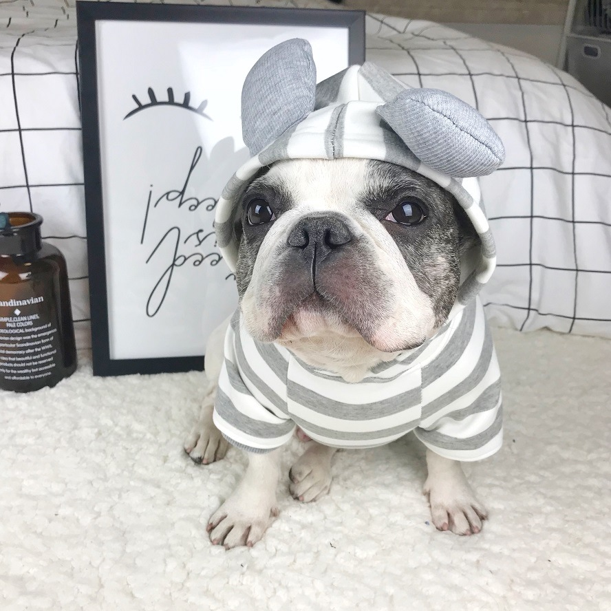 2018 Hot Summer Pet Dog Clothes for Dog Cute Ear Decoration Striped French Bulldog Costume Hoodies for Cat Small Medium Dogs S-L