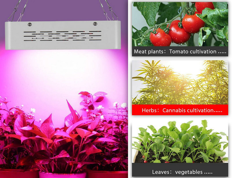 Artpad Double Chip 600W LED Grow Light Full Spectrum Plant Growing Lamp With Reflector and Timer for Greenhouse Indoor Planting 600w double chip 100 leds red grow light full spectrum uv ir for indoor greenhouse plant and flower
