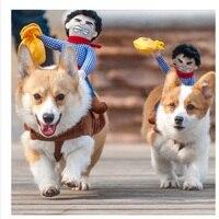 2016 حار بيع ركوب الخيل الكلب زي الجدة مضحك هالوين حزب كلب زي الكلب الملابس كاوبوي الكلب الملابس S-XL