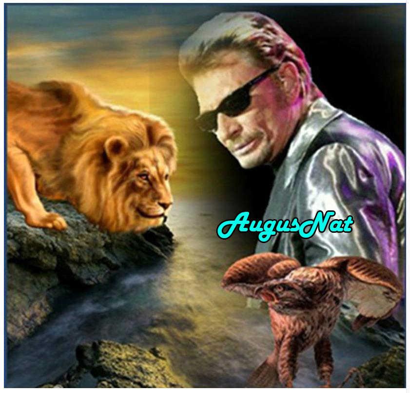אריה יהלומי ציור ג 'וני hallyday daimond רקמת רוק זינגר כוכב דיוקן borderie דיאמנט plein איש צבע diy נשר
