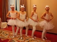 Adult Tutu Ballet Costume Hard Organdy Platter Skirt Dance Dress Girls Ballet Dance Dress Men's ballet clothes 4PCS/set