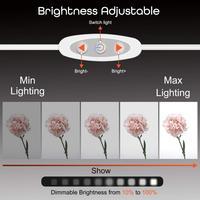 Anordsem 2 светодиодный складной светильник 40*40 портативный софтбокс для фотостудии Регулируемый светильник для цифровой зеркальной камеры 4