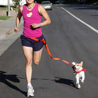 Attractive Beautiful Colorful Popular Traction Pulling Leash Pet Dog Running Jogging Convenient Safe Fashional Goods for pets