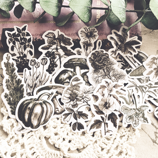 24pcs/pack Vintage Plant Illustrations Retro Fern Mushroom Beans Flower Decoration Sticker DIY Scrapbooking Label Diary Sticker