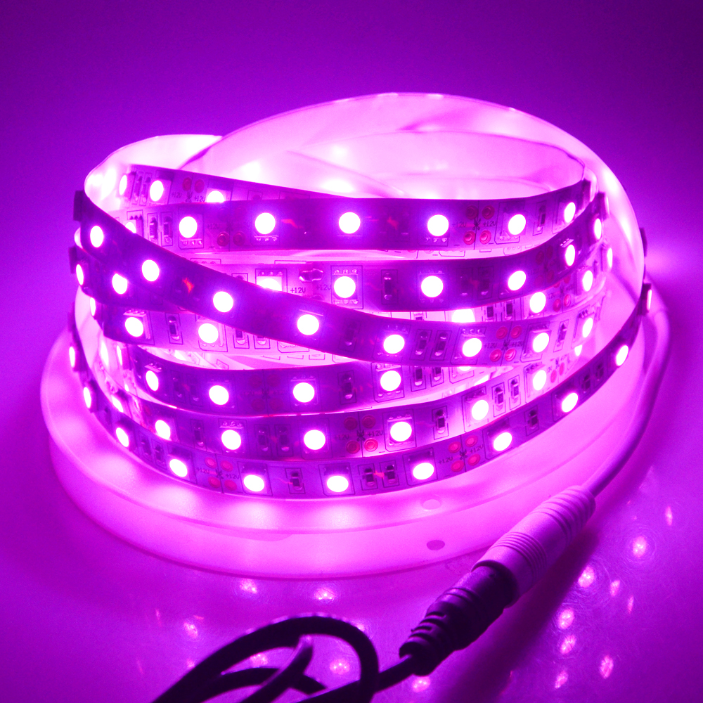 Ribbon Lighting Strip