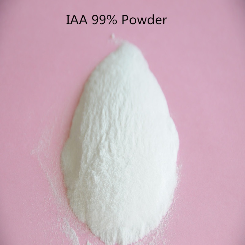 3-Indoleacetic acid 99% IAA larut air IAA 3-indole asid asetik IAA CAS: 87-51-4 C10H9NO2 Regulator Growth Plant