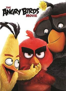 《愤怒的小鸟》2016年芬兰,美国喜剧,动画,冒险电影在线观看