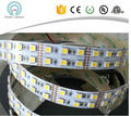 shenzhen factory double row 2line 120LEDS/M 5050 led strip 600led warm white and white