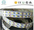 shenzhen factory double row 2line 120LEDS/M 5050 led strip 600led warm white and white