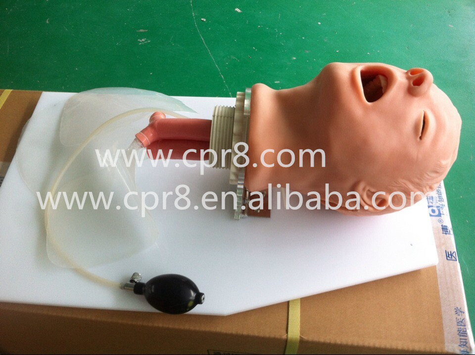 BIX-J50 Adult Airway Model Trachea Intubation Training Model W019 iso economic newborn baby intubation training model intubation trainer