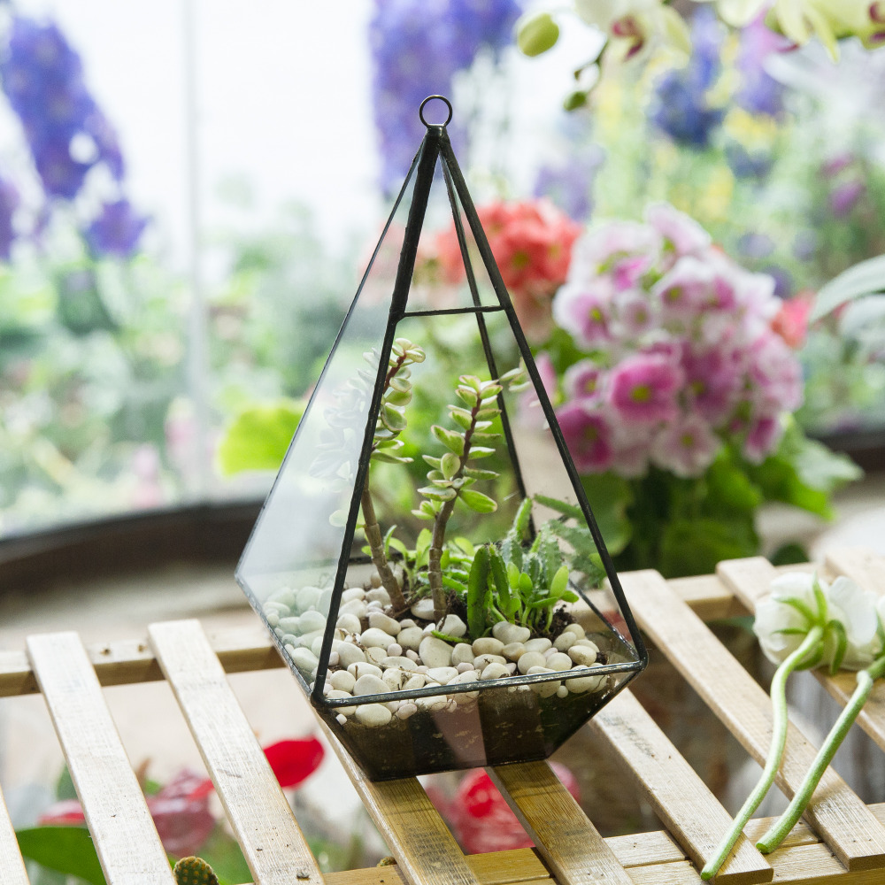 Modern Pyramid Glass Geometric Terrarium Succulent Fern