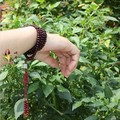 Red sandalwood beads bracelet male Women Free shipping