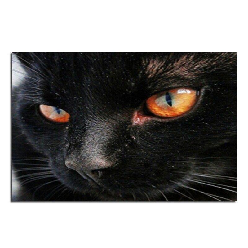 black cat 60x40 Cash Pattern Diamond Embroidery DIY Needlework Diamond Painting Cross Stitch Full Drill Rhinestones Painting