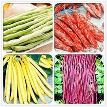 30 Pcs Long Cowpea Bean Vegetable Bonsai Vigna Unguiculata Plants Long-Podded Cowpea Snake Bean Vegetable for Home Garden Potted все цены