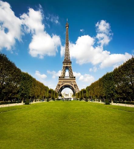 10x10ft Paris Eiffel Tower Square Green Trees Avenue Grass