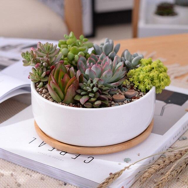 1 Set Bianco Minimalista Ceramica Succulente Pianta Vaso di Fiori Sul Desktop Va